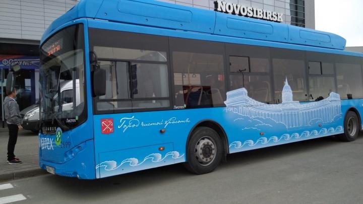 От розетки до самых окраин: власти купят 24 электробуса для поездок по Новосибирску