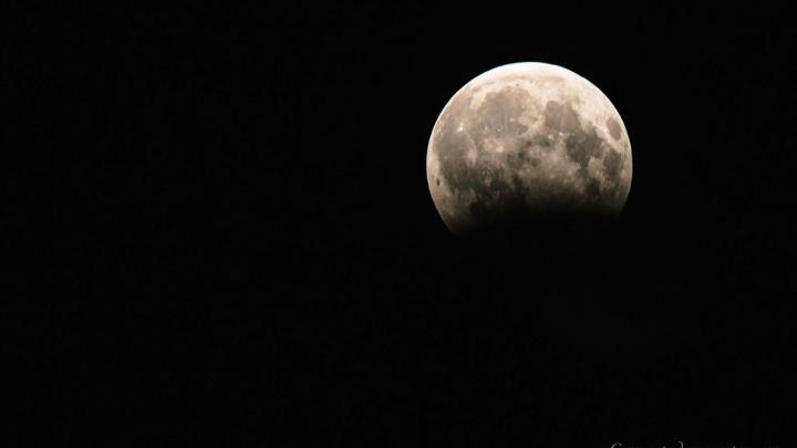 Взойдёт «кровавая» Луна: курганцы смогут увидеть самое долгое лунное затмение за 100 лет
