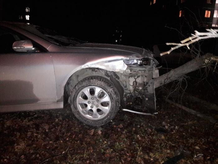 Honda отлетела на обочину и повалила дерево