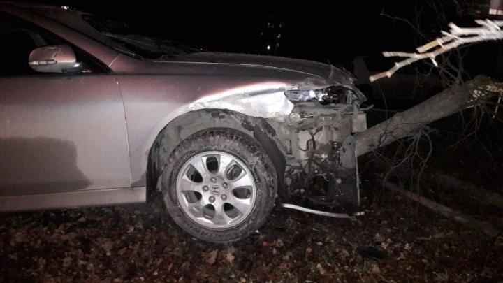Honda снесла дерево на обочине после удара о соседнюю машину