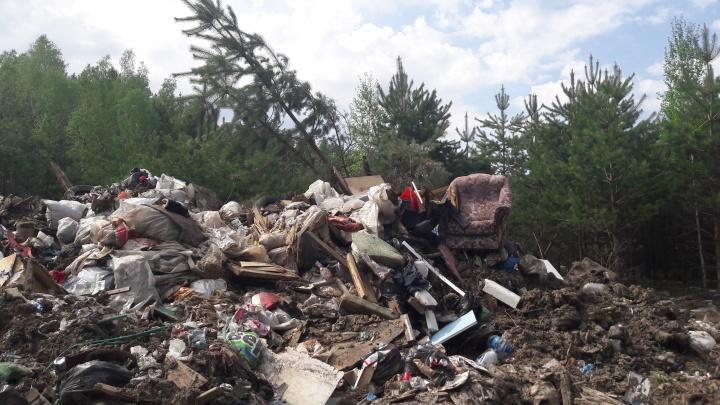 Заваленные мусором леса и дымящие полигоны: экологические проблемы Тюмени с высоты птичьего полета