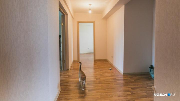 С января этого года обманутые покупатели жилья будут получать компенсацию. Как всё оформить