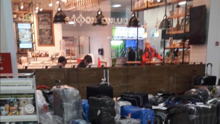 «В Толмачёво багажный коллапс»: пассажиры из Москвы больше часа не могли получить свои чемоданы