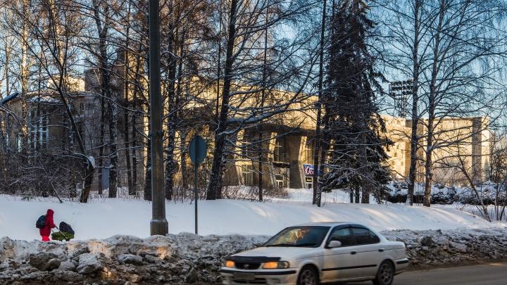 Пусть другие управляют: СО РАН решило избавиться от общежитий, леса и детских садов