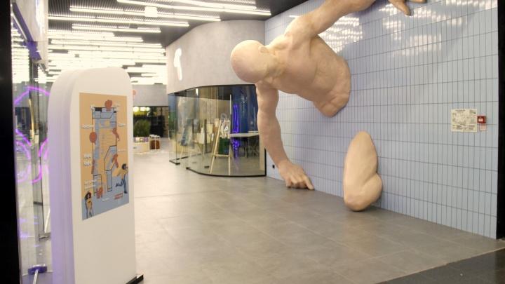 На месте магазина Adidas в «МЕГЕ» открылся коворкинг с великаном в стене