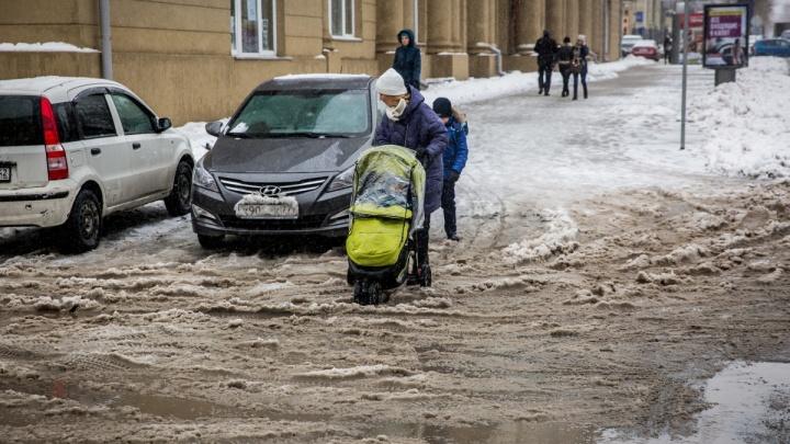 Восемь машин на весь город: власти признали, что в Новосибирске нечем чистить тротуары