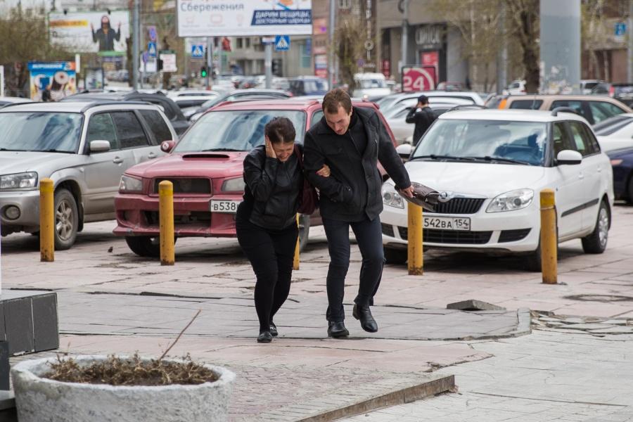 Непаркуйтесь около деревьев: новосибирцев предупредили о стремительном усилении ветра
