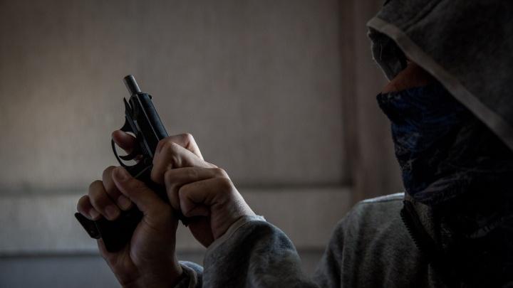 Новосибирец открыл стрельбу по птицам во дворе жилого дома