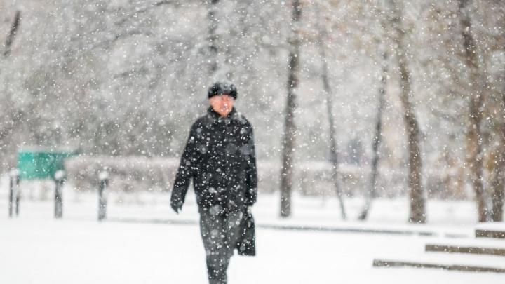 Синоптики предупредили красноярцев о надвигающейся снежной буре