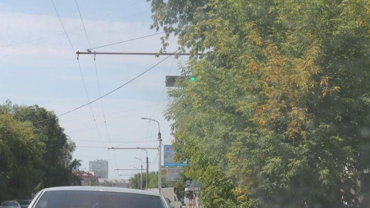 В Кургане общественники отправились на поиски светофоров и дорожных знаков