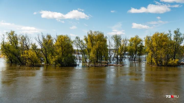 В Тюменской области 13-летний мальчик сорвался с высокого берега в реку и утонул