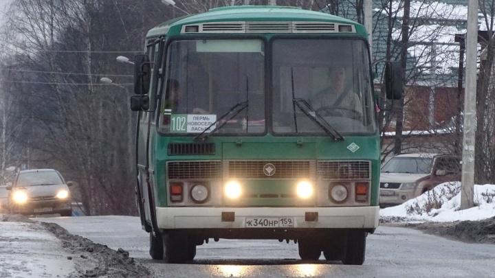 В Перми запустили три новых пригородных автобуса