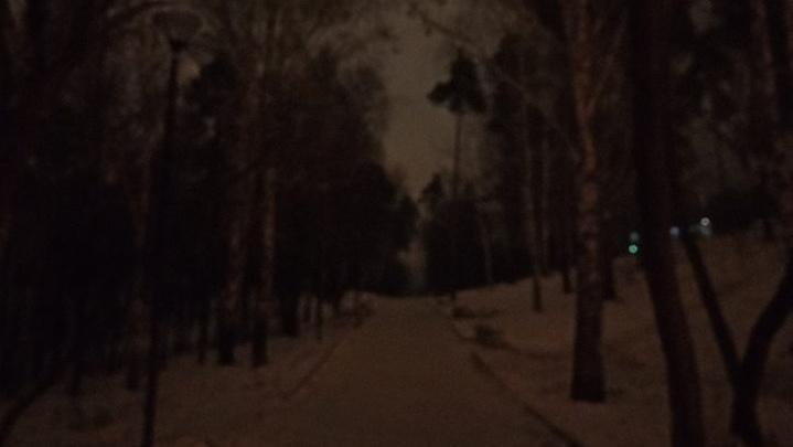 «Чуть выбились из графика»:в Основинском парке так и не появилось обещанное к ноябрю освещение