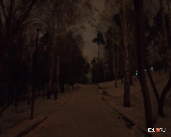 В такой темноте владельцы собак гуляют с питомцами утром и вечером