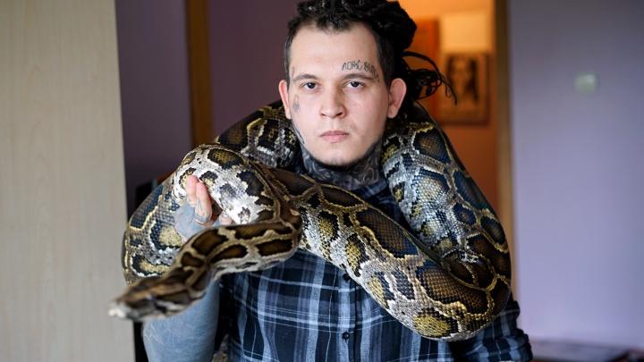 «Моноклевая кобра укусила меня в ногу»: история омского «змееуста»