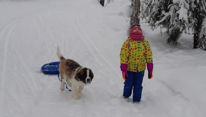 На пробежку в 20 километров и с собакой в лес: как новосибирцы проводят первый день нового года