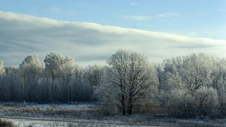 Экстренное предупреждение: нижегородцев ожидает изморозь и гололед