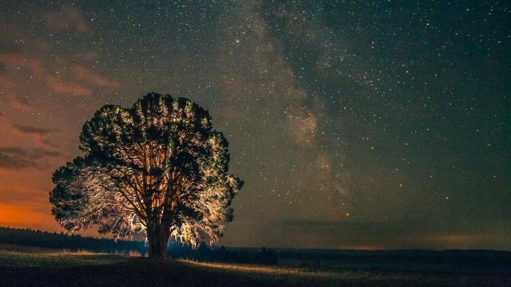 Звезды как на ладони: подборка «космических» снимков звездного неба от читателей E1.RU