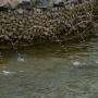 На трёх фонтанах в Перми устроят новое световое и водное шоу