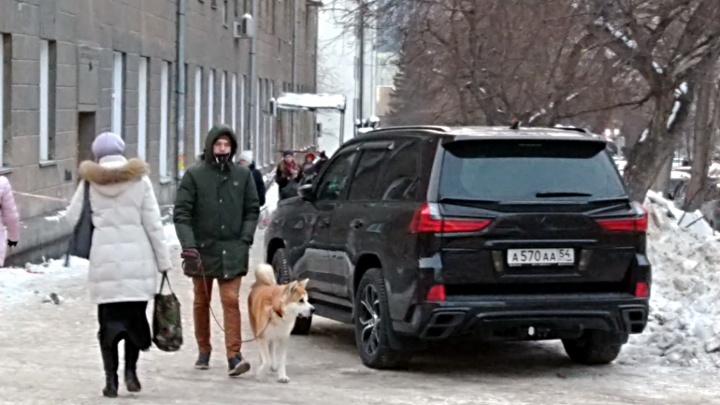 «Я паркуюсь как чудак»:Lexus ААА — людям и собакам проход воспрещен
