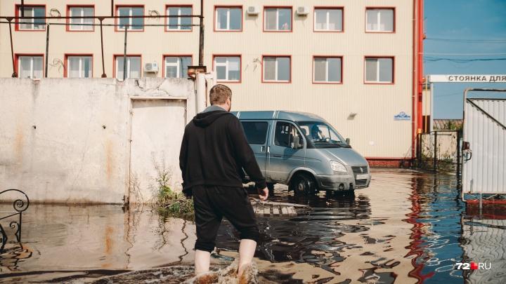 Миллионные убытки, затопленные огороды и спасенный пес: 17 кадров с баз на Барабинской