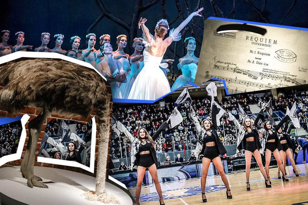 Пять вечеров: вечер балета, тактильные модели и советский авангард