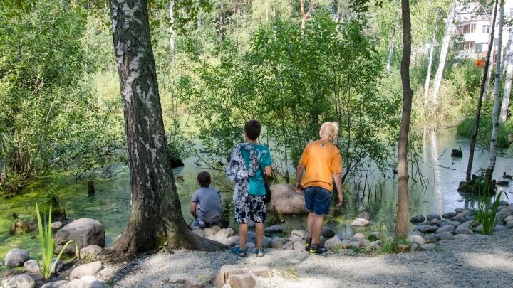 Десять детей тяжело заболели после прогулок по лесам и дачам в Новосибирске