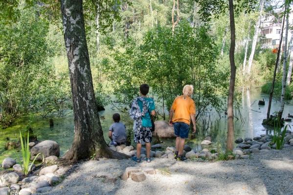 Врачи советуют не забывать о безопасности во время прогулок в лесных зонах и по садовым участкам — сейчас разгар клещевого сезона