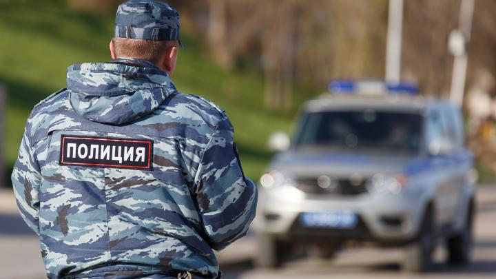 Спасая ребенка, волгоградский полицейский пристрелил алабая