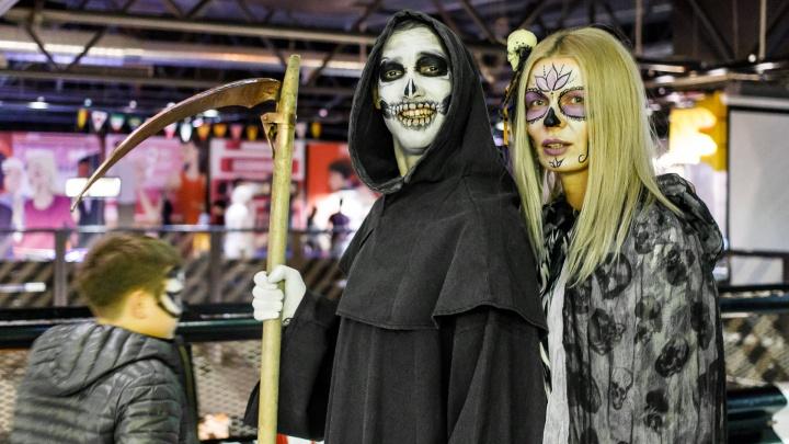 «Было ужасно интересно»: волгоградские квизеры устроили интеллектуальную битву на Хеллоуин