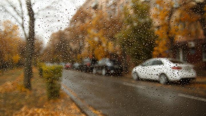 С симптомами осени: в Волгоград идет резкое похолодание, дожди и сильный ветер