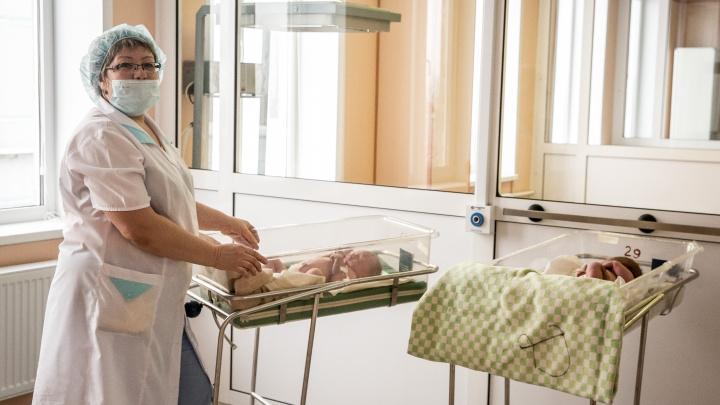 Медики помогли бесплатно забеременеть сотне сибирячек