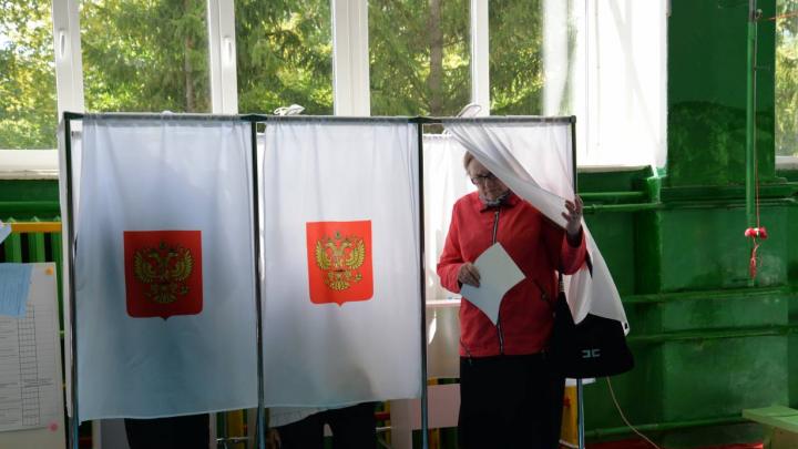 Известны результаты выборов в Курганскую городскую думу: «Единая Россия» составит большинство