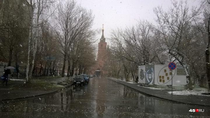Синоптики на ближайшие дни обещают Кургану снег