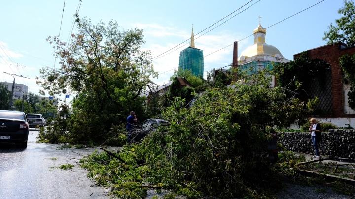 Астения и перелом: подробности о состоянии пострадавших во время шквала в Перми