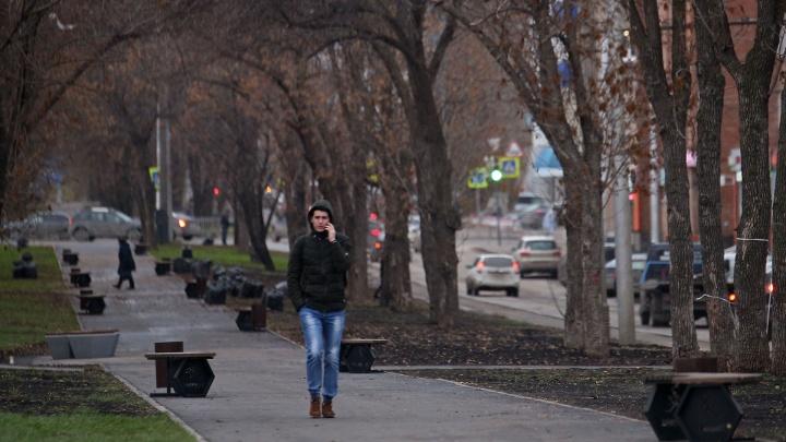 Зима слегка задержится: синоптики рассказали о погоде на 7 ноября