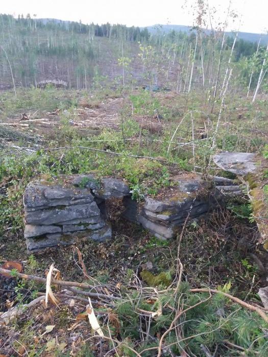 Деревья, которые должны были защитить памятник археологии от взрыва, вырублены полностью