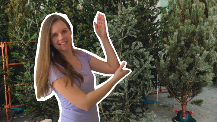 «Лучшая елка — та, которую не купили». Эколог из Тюмени — как не навредить природе в Новый год