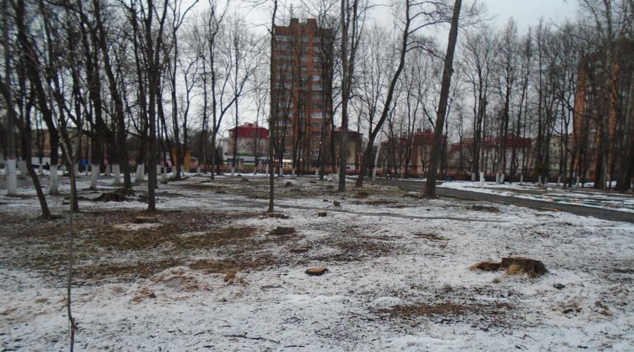 Автозаводский парк безбожно зачищали под строительную площадку