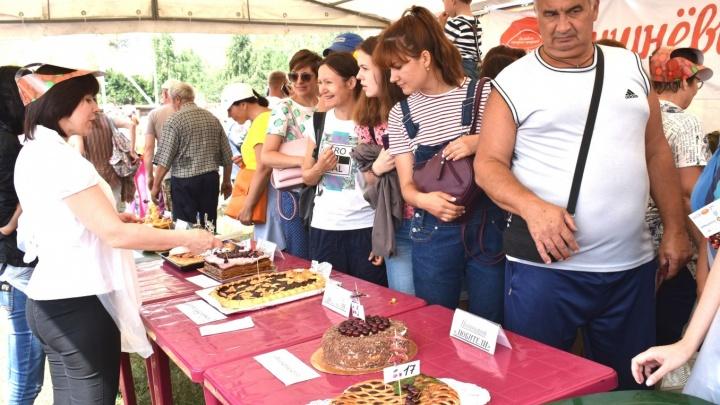 Вкус вишни: в Ширяево пройдет гастрономический фестиваль