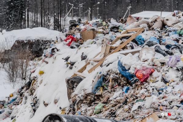 По нормативу в Прикамье каждый человек производит более 200 килограммов мусора