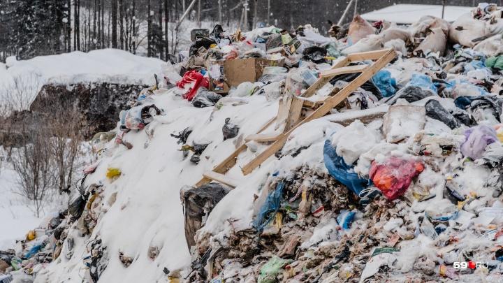 В Перми пройдет митинг против «мусорной реформы»
