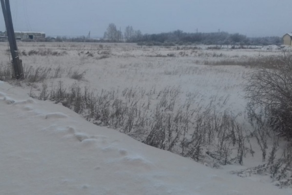Наличие налёта на снегу в посёлке на предприятии подтвердили