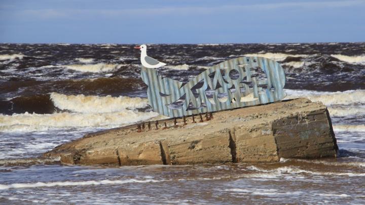 Неистовые волны: фоторепортаж с берега Белого моря, где бушует шторм