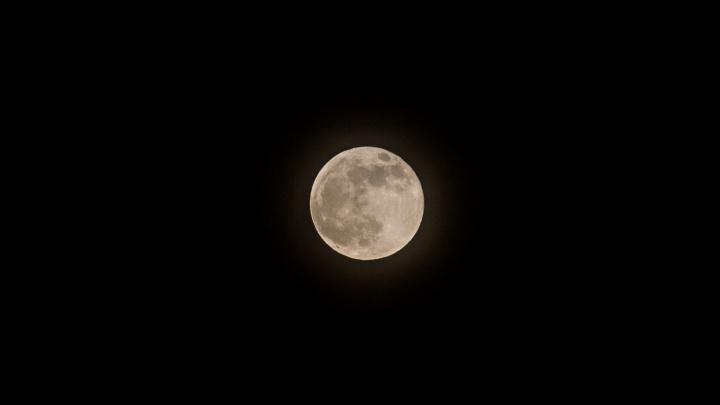 Фото: над Новосибирском взошла огромная Луна
