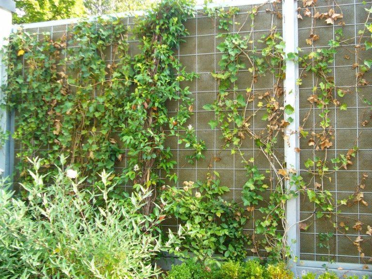 Шумозащитный экран с вертикальным озеленением может решить эту проблему