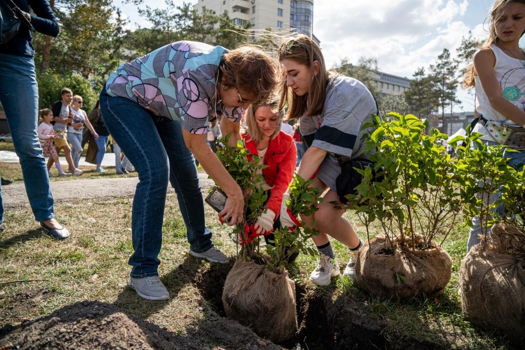 поздравление с посадкой деревьев все советы улучшению