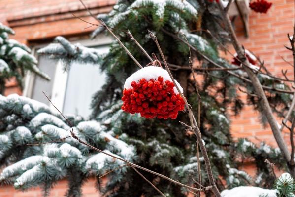 В городе будет идти снег и дуть неслабый ветер