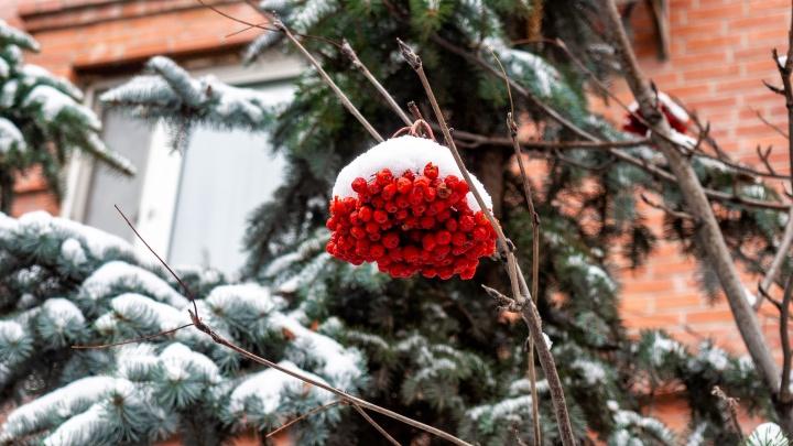 Конец ноября принесёт в Тюмень похолодание: погода на выходные