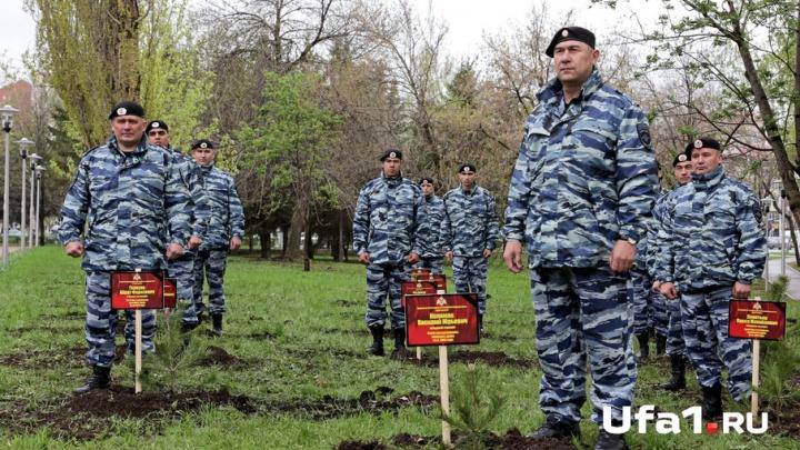 В память о погибших военных в Уфе появилась целая аллея